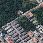 foto aérea da área verde de coqueiros Google maps